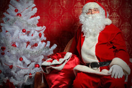 Santa Claus with presents and New Year tree at home. Christmas. Stock Photo - 8217543