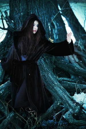 gothique: Tir d'une femme gothique dans un parc en hiver. Mode. Banque d'images