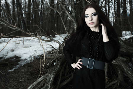 Shot of a gothic woman in a winter park. Fashion. Stock Photo - 9296857