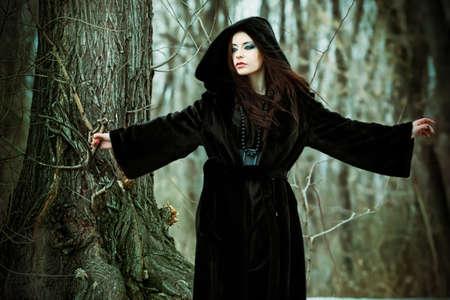 manteau de fourrure: Tir d'une femme gothique dans un parc en hiver. Mode. Banque d'images