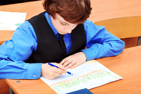 diligente: Retrato de un escolar en un aula.