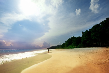 caribbean cruise: Tropical beach on a beautiful island. Andaman Sea.