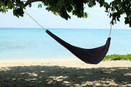Romantic cozy hammock in the shadow of the palm on the tropical beach by the sea photo