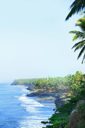 ocean plants: Picturesque seacoast view with tropical forests.