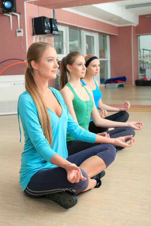 Group of young women in the gym centre. Yoga class. Stock Photo - 14084326