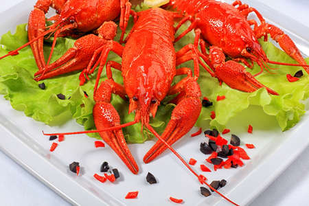 A dish with boiled crawfish, lemon and lettuce. photo