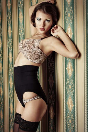 Charming young woman in seductive lingerie posing over vintage background. Stock Photo - 19165066