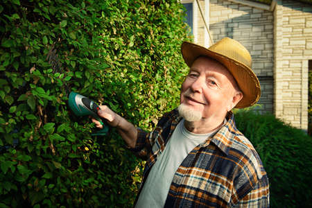 Senior man trimming garden plants. Gardening concept. Happy retirement. Stock Photo - 79239348