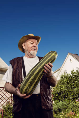 Handsome senior man stands in his garden and holding large zucchini. Gardening and vegetable farming. Happy retirement.