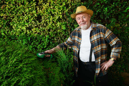 Senior man trimming garden plants. Gardening concept. Happy retirement. Stock Photo - 85271512