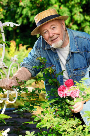Portrait of a handsome senior man growing roses in his garden. Gardening and floriculture. Happy retirement.