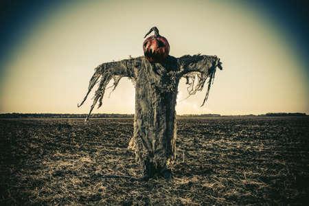 Halloween legende. Portret van Jack-lantaarn met een pompoen op zijn hoofd in het veld als een vogelverschrikker.