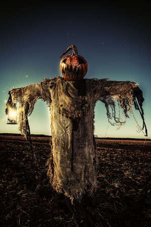 Halloween legend. Portrait of Jack-lantern with a pumpkin on his head standing in the field as a scarecrow. Reklamní fotografie