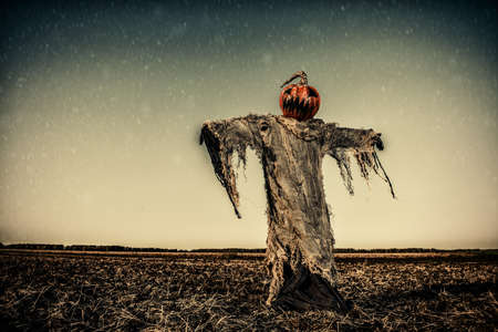 Halloween legend. Portrait of Jack-lantern with a pumpkin on his head standing in the field as a scarecrow. Stock Photo