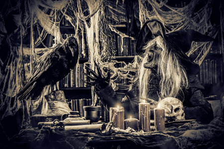 Sitting witch with black raven. Halloween concept. Horror movie.