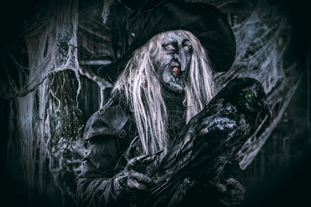 A portrait of a scary wizard with a black raven. Halloween. Horror film.