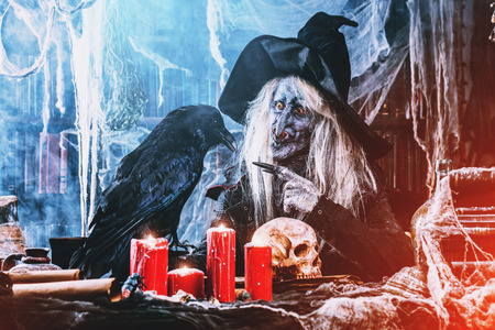 A portrait of a scary wizard with a black raven.