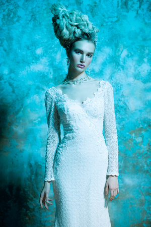 A portrait of a cold beautiful lady wearing a tight dress. The snow Queen. Beauty,cosmetics, hairstyle, fashion. Stock Photo - 113544209