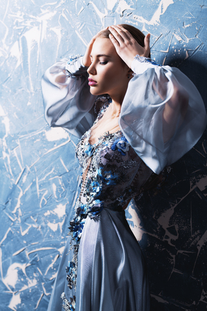 A portrait of a mysterious lady in a fluffy silver dress with flowers posing indoor. Fairy tale, fashion. Imagens