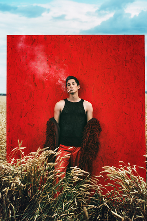 Fashion shot of a professional handsome male model in long red fur coat posing in a wheat field. Archivio Fotografico - 121545337