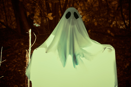Halloween concept. A ghost under a white sheet in a dense gloomy forest.