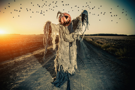 Leyenda de Halloween. Retrato de Jack-lantern con una calabaza en la cabeza de pie en el campo como un espantapájaros. Foto de archivo