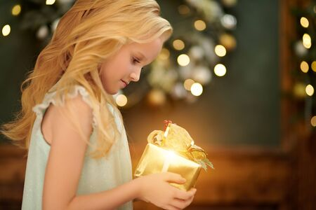 Cute little girl holds a gift box standing in a house beautifully decorated for Christmas. Zdjęcie Seryjne