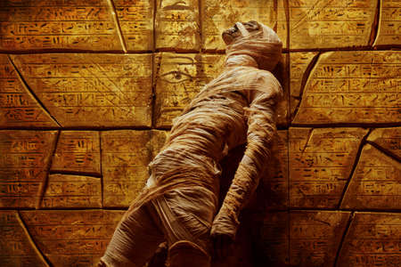Halloween mummy looking up against the background of a wall with ancient Egyptian hieroglyphs. Halloween. Ancient Egyptian mythology.