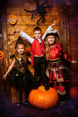 Cute little children celebrate Halloween with fun. Halloween decorations with pumpkins, cobwebs and spider.