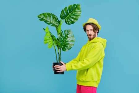 A young man in trendy bright clothes holds a pot with a palm tree in his hands on a blue background. People, emotions. Plants. Copy space.