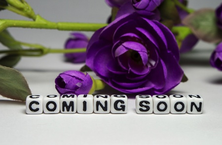 Coming soon message with flowers and green leaves   photo