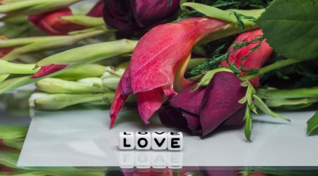 Love message with flowers and text  Beautiful card theme with red flowers and fresh pieces photo