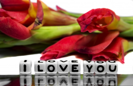 I love you with red flowers and green stems on white and subtle background  photo