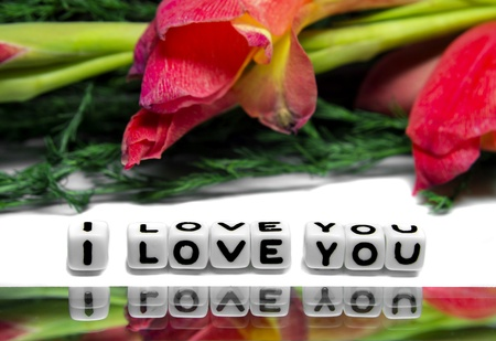 I love you message with red and green flowers along with the alphabetical 3d message photo