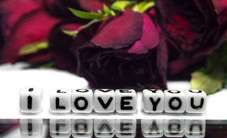 A dark rose and I love you message  Dark red rose is in the background and text on white   photo