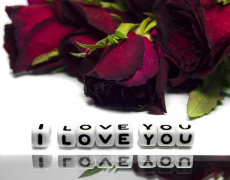 I love you message wth red roses in the background  Text on white background and roses in back   photo