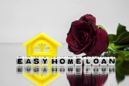 homeownership: Conceptual image of Easy home loan with flower and background. Stock Photo