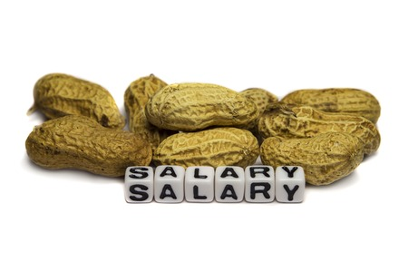 Conceptual image showing peanuts as salary for the workers.