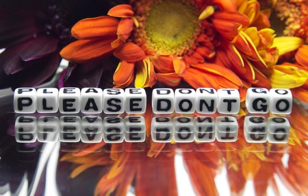 hankering: Please do not go message with flowers on white background