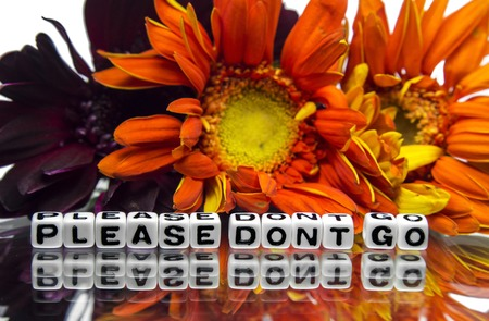 hankering: Please do not go message with flowers and text on white background