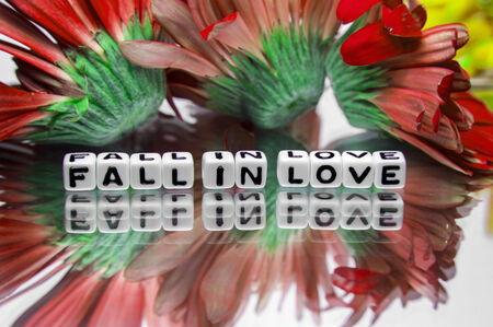 hankering: Fall in love message with red flowers and text