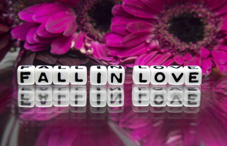 hankering: Fall in love message with pink big flowers and text