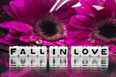 hankering: Reflective fall in love message with pink and red flowers
