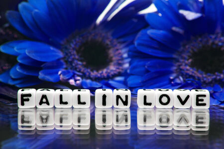 hankering: Blue theme with fall in love message and flowers along with the reflective text  Stock Photo