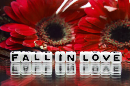 hankering: Fall in love message with red flowers in background