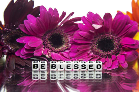 Be blessed with mixed flowers in the background  photo