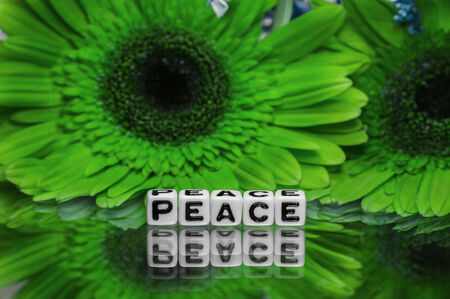 pacifism: Peace text message with green flowers in the background.