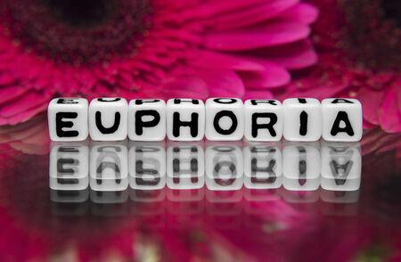 euforia: Texto Euphoria con flores en el fondo