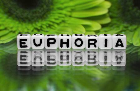 euforia: Mensaje de texto Euphoria con flores verdes en el fondo Foto de archivo