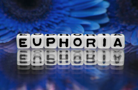 euphoria: Euphoria text with blue flowers in the background